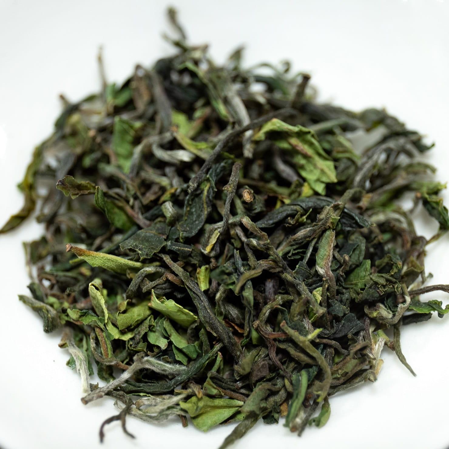 Herbata Czarna Darjeeling First Flush 2021 SFTGFOP1 CH GIDDAPAHAR 02/21